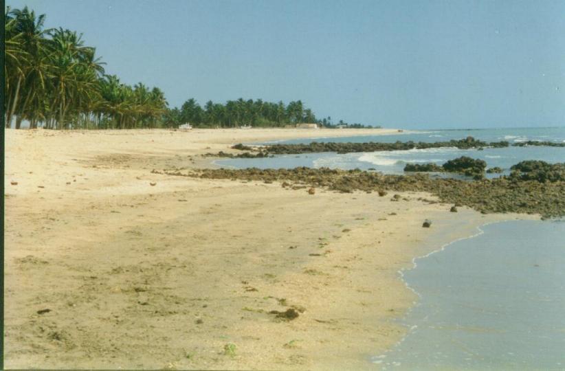 Clique aqui praia de Morro Branco Piaui